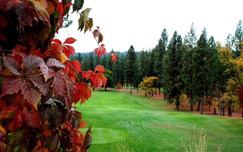 Downriver Golf Course Autumn