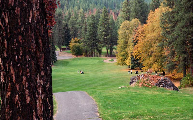 Indian Canyon Golf Course Autumn